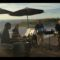 Caladesi Steel Band Quartet at the Sandpearl Resort